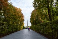 People walk along the green avenue of bushes and trees. Kiev. Royalty Free Stock Image