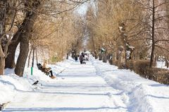 People walk in the city Park. Sunny winter`s day.  Royalty Free Stock Photography