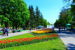 People Walk In The Park With Flower Beds And Fountains Stock Photo