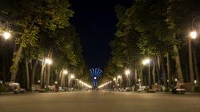 People Walk at Night Park stock footage