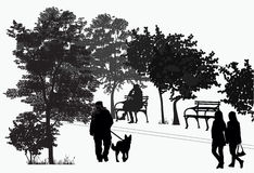 People walk in the park Stock Image