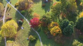 People walk in the park on a warm autumn day. people sit on the lawn. Shooting from a height above the park stock footage