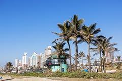 People Walk  Promenade Behind  Palm Trees Against City Skyline Royalty Free Stock Photos