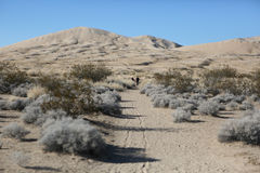 People walk on the sand of the Mojave Desert. People walk at the Kelso Sand Dunes in the Mojave Desert, Western United States Stock Photography