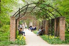 People walk under pergola in Moscow University Botanical Garden Stock Images