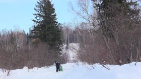 People walk in the winter woods. Two women stock video footage