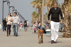 People walking along the seafront, Beirut. Couples, women, children and men, one man is walking a dog along the seafront, Lebanon Stock Photography
