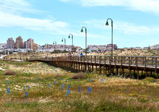 People walking along the wooden boardwalk. La Mata, Spain - April 4, 2017: People walking along the wooden boardwalk. La Mata is a small town located 5 km Royalty Free Stock Photos