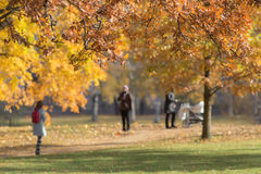 People walking in the autumn park Royalty Free Stock Photo