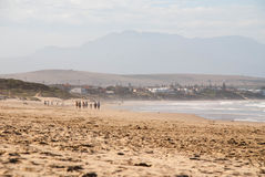 People walking on a beach in Mossel Bay, South Africa. A group of people walking along a beach in Mossel Bay, South Africa Royalty Free Stock Images