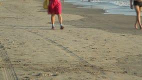 People walking on the beach. Unidentified people walking on the beach stock video