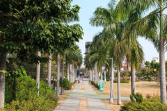 People walking in Central Park of Kaohsiung Stock Images