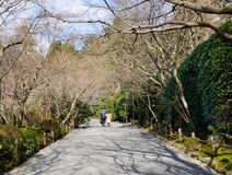People walking at the city park in Tokyo, Japan Royalty Free Stock Photo