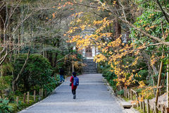 People walking at the city park in Tokyo, Japan Stock Photography