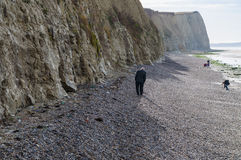People walking on Cote d'Opale coast with white cliffs near Audresselles, France Royalty Free Stock Photo