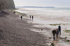 People walking on Cote d'Opale coast with white cliffs near Audresselles, France Royalty Free Stock Photos