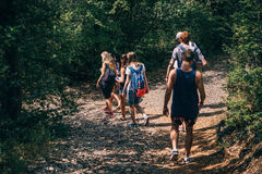 People Walking on Dirt Path in Forest at Daytime Royalty Free Stock Images