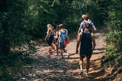 People Walking on Dirt Path in Forest at Daytime Royalty Free Stock Photos