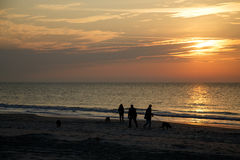 People Walking Dogs on Dawn Beach Royalty Free Stock Photo
