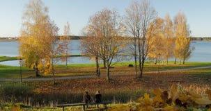 People walking with enjoying serene park foliage by lake during autumn.  stock footage