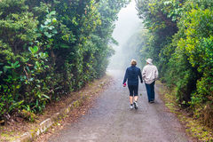People walking in footpath thru rainforest in Costa Rica Royalty Free Stock Photo