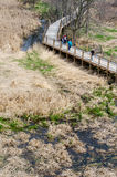 People walking in  the Galien river county park Royalty Free Stock Photo