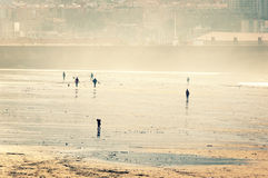 People walking and having fun on beach Royalty Free Stock Photo
