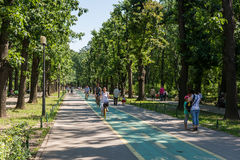 People Walking In Herastrau Park Stock Images