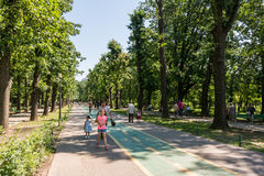 People Walking In Herastrau Park Royalty Free Stock Image