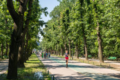 People Walking In Herastrau Park Royalty Free Stock Photo