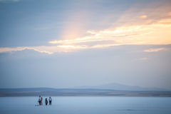 People walking on lake Tuz, Turkey. Stock Image
