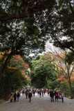 People walking at the Meiji-jingu temple in Shibuya, Tokyo, Japan. Tokyo, Japan - December 6, 2015: People walking at the Meiji-jingu temple in Shibuya, Tokyo Stock Photo
