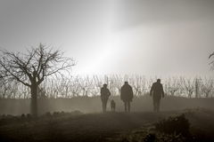 People walking in mist Stock Image
