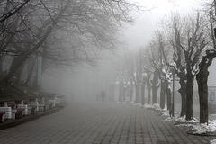 People walking by misty road in the park Stock Photography