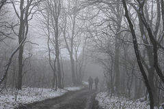 People walking by misty road in the park Stock Image