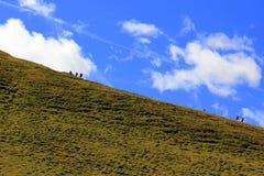 People walking in mountains Stock Photo