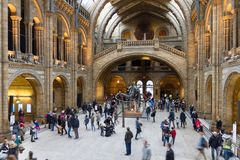 People walking in the Natural History Museum, London, UK Stock Photo