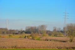 People walking in nature, the parc: Gentbrugse meersen Stock Images