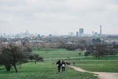 Free People Walking On Primrose Hill, London, UK Royalty Free Stock Images - 139949789
