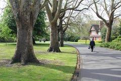 People walking in a park in Dublin, Ireland