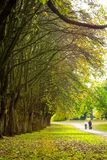 Beautiful Spring in Dunbeth Park, Scotland. People walking in the park, Dunbeth Park in Scotland, United Kingdom stock images