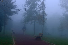 People walking in the park in the fog Stock Photography