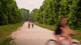 People walking. In the park in spring season stock video footage