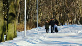 People walking in the park. In winter stock footage