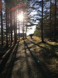 People walking. On path, Norway Stock Image