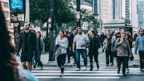 People Walking on Pedestrian Lane during Daytime Stock Images
