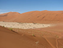 People walking in red sand dunes Sossusvlei Stock Photography