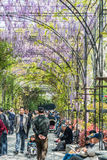 People walking and and relaxing  in wisteria lane fuxing park sh Stock Photography