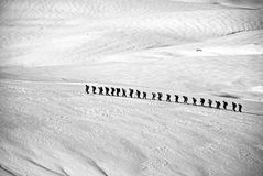 People Walking on Snow Field Grayscale Photography Stock Photos
