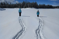 People Walking Through Snow in Mountain Wilderness Pine Forest stock photos